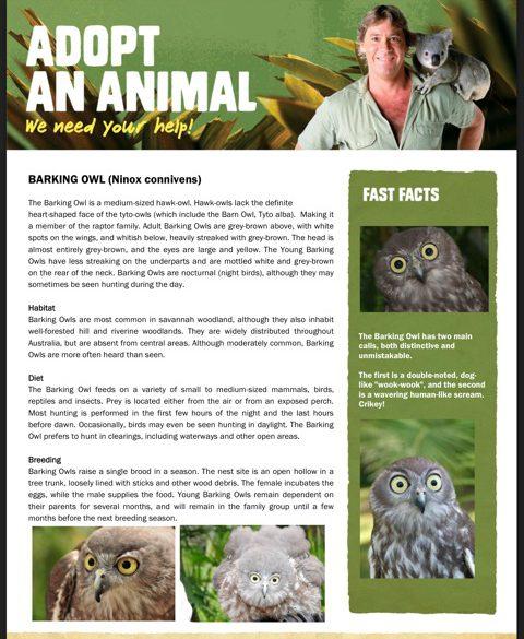 Adopt-an-animal (2)